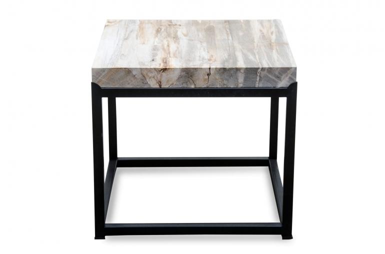 Tafel Versteend Hout : Bijzettafel petrified wood overige meubels stoop furniture